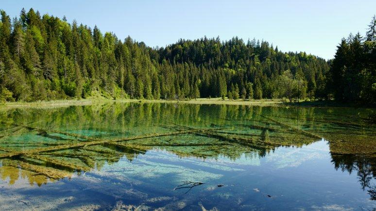 Lake Riedener See, © Naturparkregion Reutte/Ronald Petrini