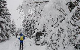 Snowshoeing in Hochfilzen, Pillerseetal Valley. (Photo: Tirol Werbung)
