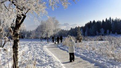 seefeld_winter_wandern, © Olympiaregion Seefeld