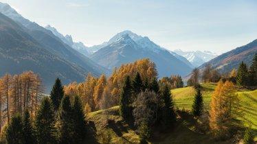 Telfeser Wiesen, © Tirol Werbung / Mario Webhofer
