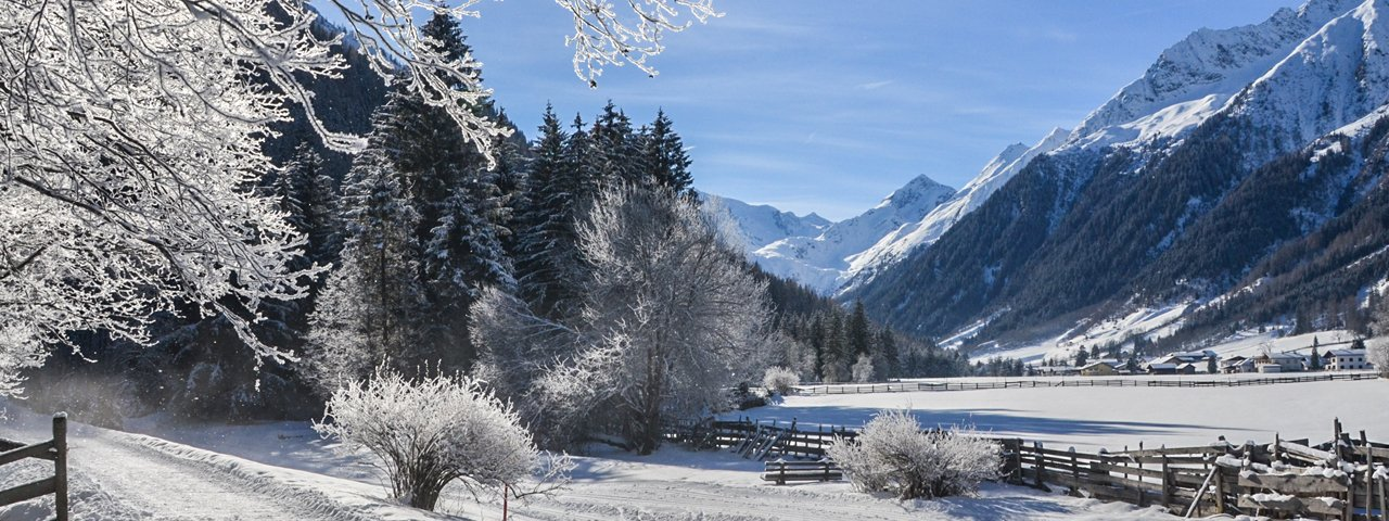Winter hike in the Gschnitztal Valley, © Joakim Strickner