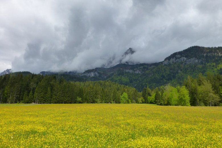 The Way of Saint James in Tirol, between St. Johann and Going