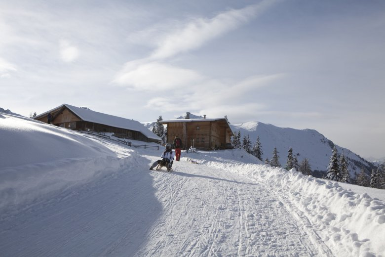 Careening down a hill on a sled offers great fun for the young and the young at heart.