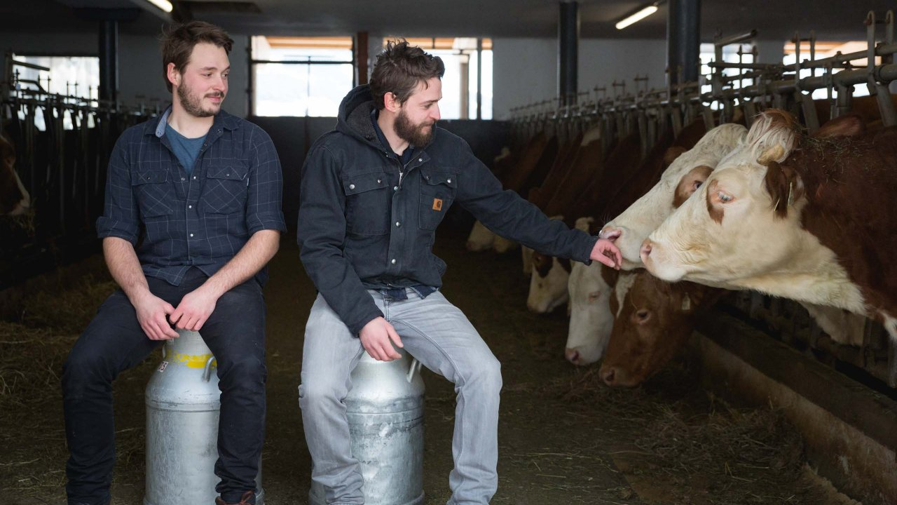 Markus and Thomas Ehammer with their cows, © Tirol Werbung/Bert Heinzlmeier