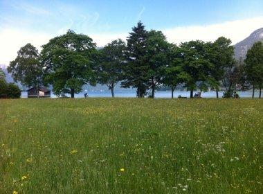 Am Achensee