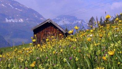 am Lechweg in Holzgau