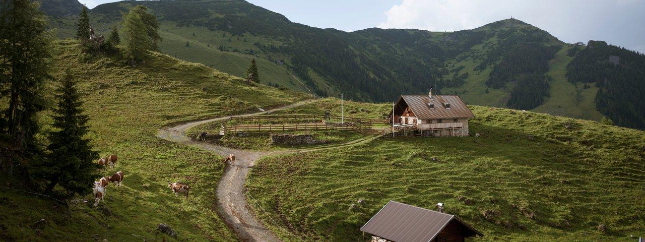Bergalm hut in the Rofan Mountains, © Tirol Werbung Jens Schwarz
