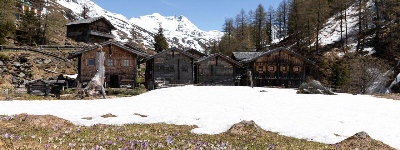Spring walk into the Gschlößtal Valley, © Tirol Werbung/Mario Webhofer
