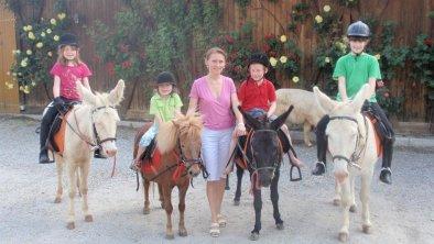 Reiten mit Esel und Pony, © Wirtshaus Nattererboden