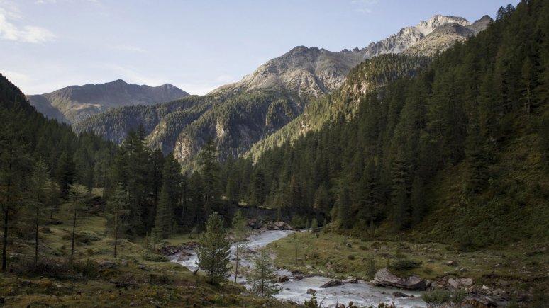 Hohe Tauern National Park, © Tirol Werbung/Bert Heinzlmeier