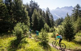 Enduro or all-mountain bikes are recommended to make the most of the 3-Country Enduro Trails.