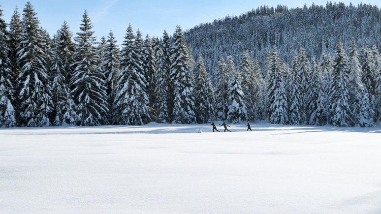 © Tirol Werbung / Aitzetmüller Johannes