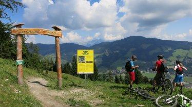 The Gaisberg Trail in Kirchberg, © Tirol Werbung/Nicole Pfeifer