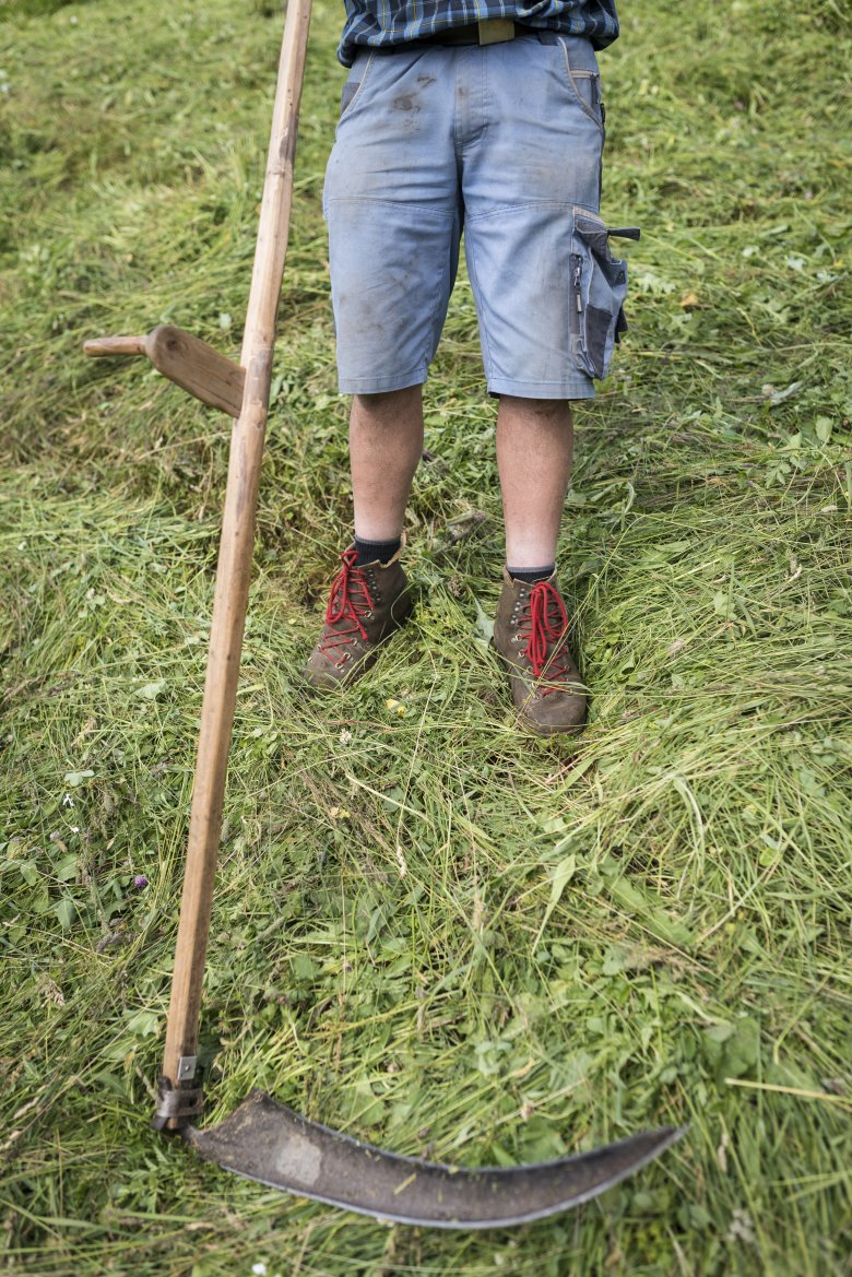 Some of the pastures around the Stableshof are so steep that they can only be cut by hand.