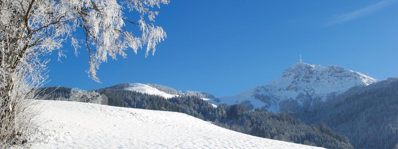 Gruttenweg winter hike, © Albin Niederstrasser
