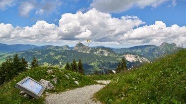 Neunerköpfle Adventure Trail, © TVB Tannheimer Tal / Achim Meurer