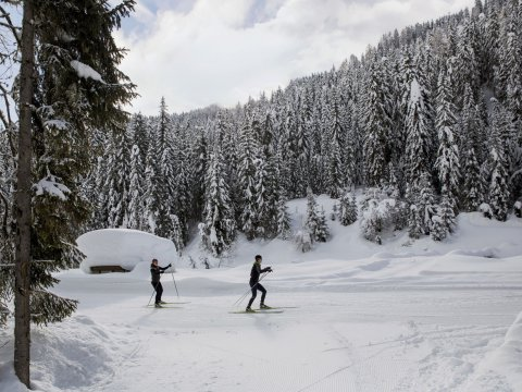 Cross Country Skiing in Obertilliach, Osttirol