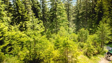 Grubigalm Trail in Lermoos, © Jens Staudt