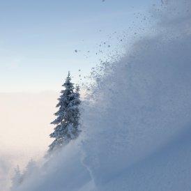 © Tirol Werbung/Michael Rathmayr
