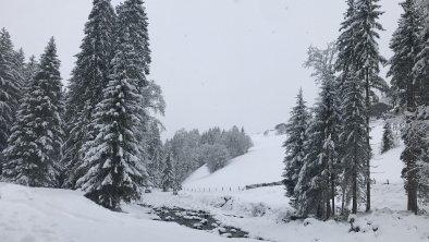 Winterstimmung, © Martin Reiter