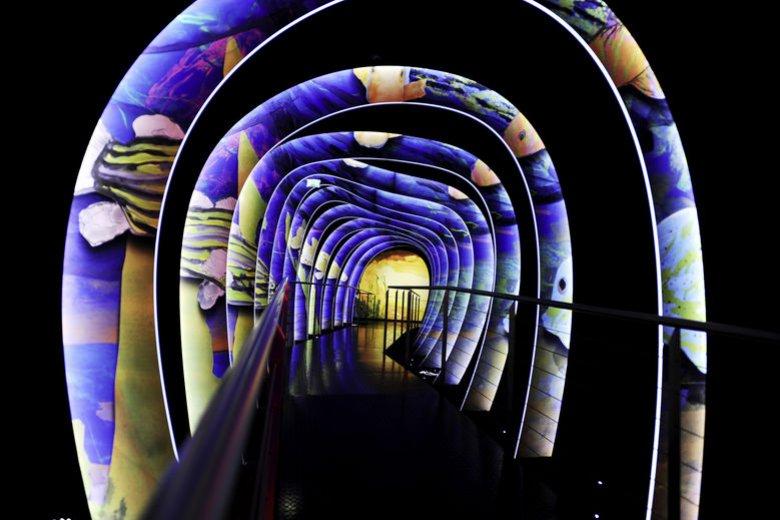 The Swarovski Crystal Worlds in Wattens