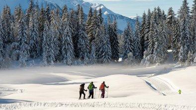Schneeschuwandern und Langlaufen in Wildmoos, © Olympiaregion Seefeld - J.Geyer