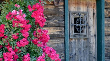 Hütte Tür
