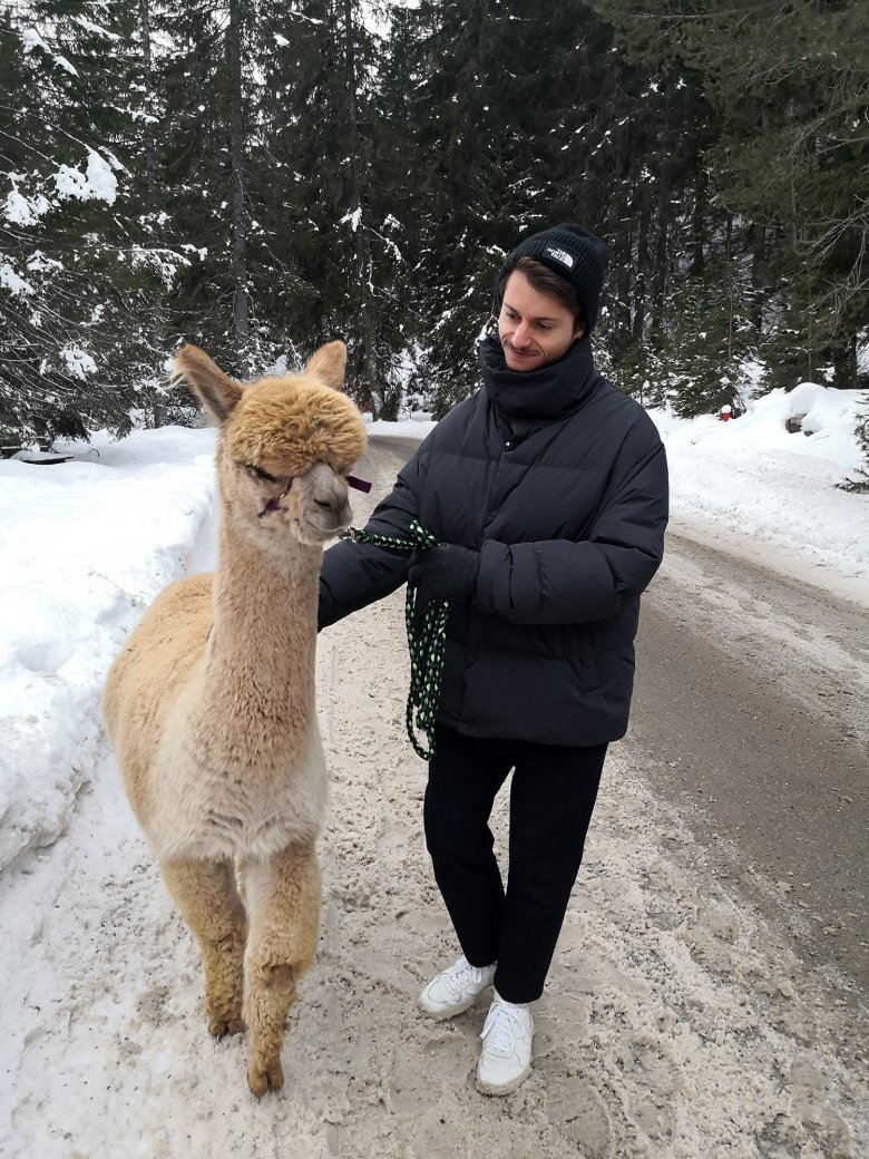 David with a furry friend during an alpaca trek in Seefeld.