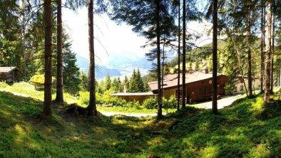 Der Märchenwald hinter dem Haus