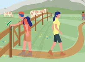 Correct Behaviour Part 9, © Landwirtschaftskammer Tirol
