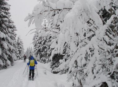 Snowshoeing in Hochfilzen, Pillerseetal Valley. (Photo: Tirol Werbung)