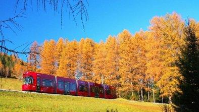 Stubaitalbahn Herbst