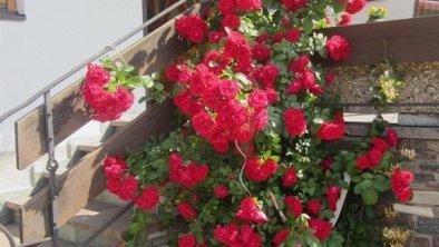Wir lieben Blumen