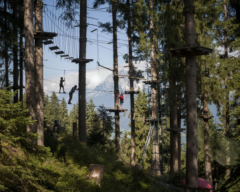 Horn Park Aerial Forest in St. Johann in Tirol with rugged Wilder Kaiser Range in the Rear