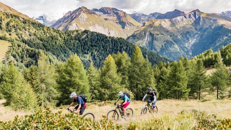 The Adler Trail at the Bikepark Großglockner Resort, © Bikeboard/Roland Kachelhauser