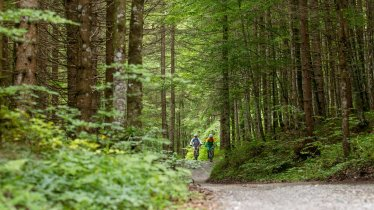 Mountain bike ride around the Guffertspitze mountain, © Erwin Haiden