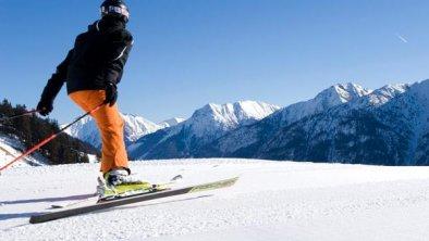 winter_skifahrer_3_06
