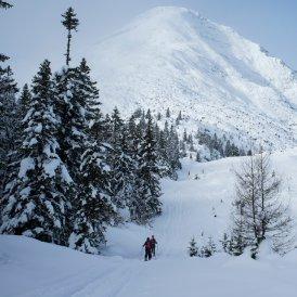 Ski touring in Tirol, © Tirol Werbung/Martina Wiedenhofer