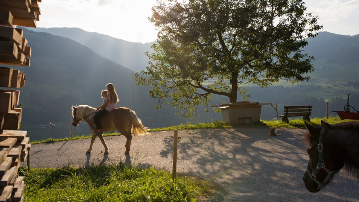 The farm has several horses which guests can ride – simply ask., © Tirol Werbung/Lisa Hörterer