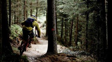 Single trail zell am ziller