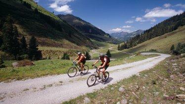 Riding to the Steinbergalm hut, © Alpbachtal Seenland Tourismus