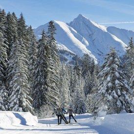 Cross-country skiing in Seefeld, © Tirol Werbung / Aitzetmüller Johannes