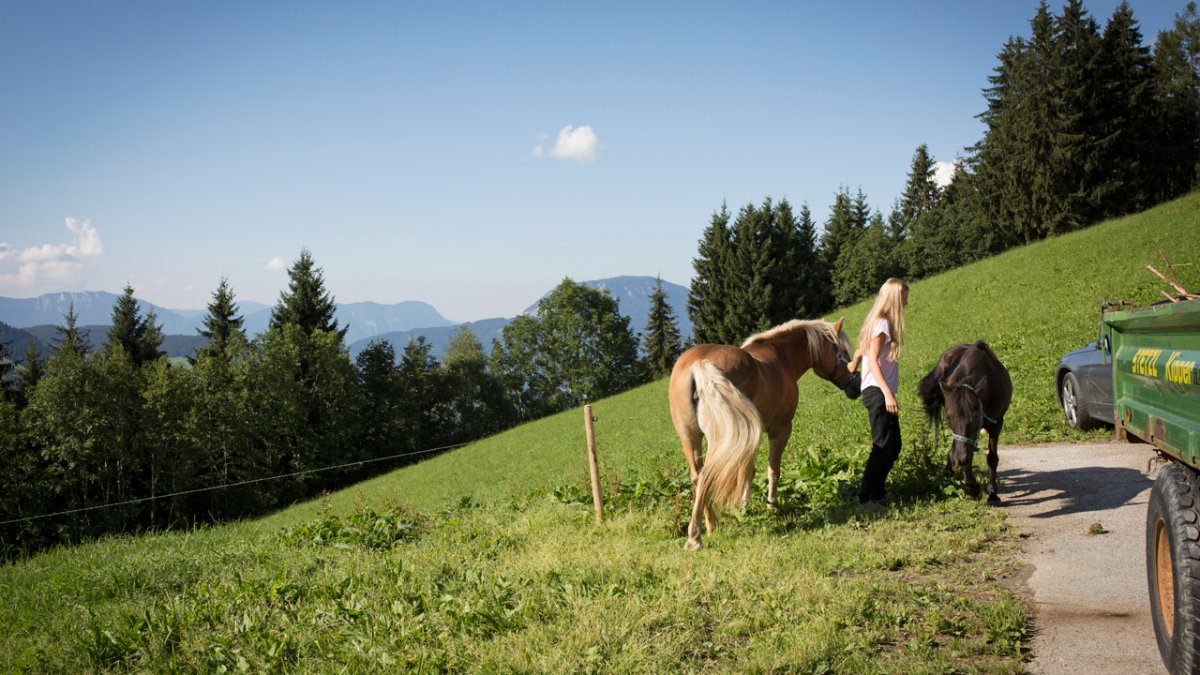 The Siedlerhof, the final house along the road leading up onto the Glantersberg mountain, is surrounded by forests and meadows., © Tirol Werbung/Lisa Hörterer