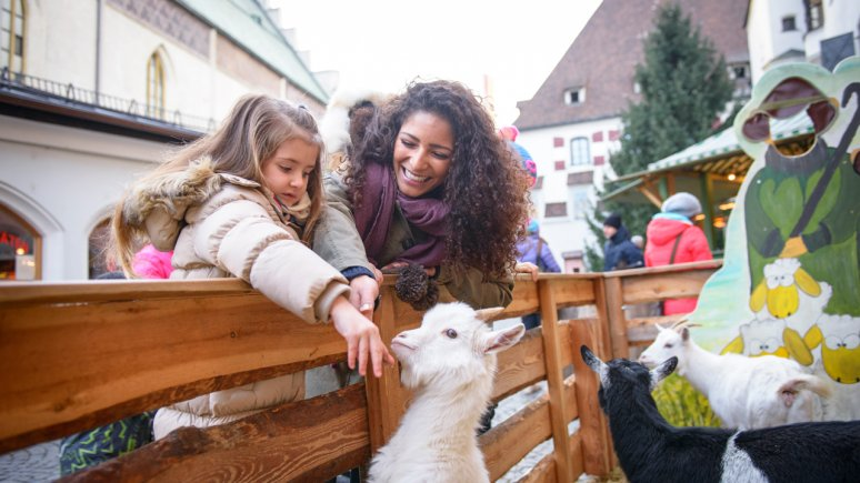 The Petting Zoo at the Christmas Market in Hall, © Gerhard Flatscher