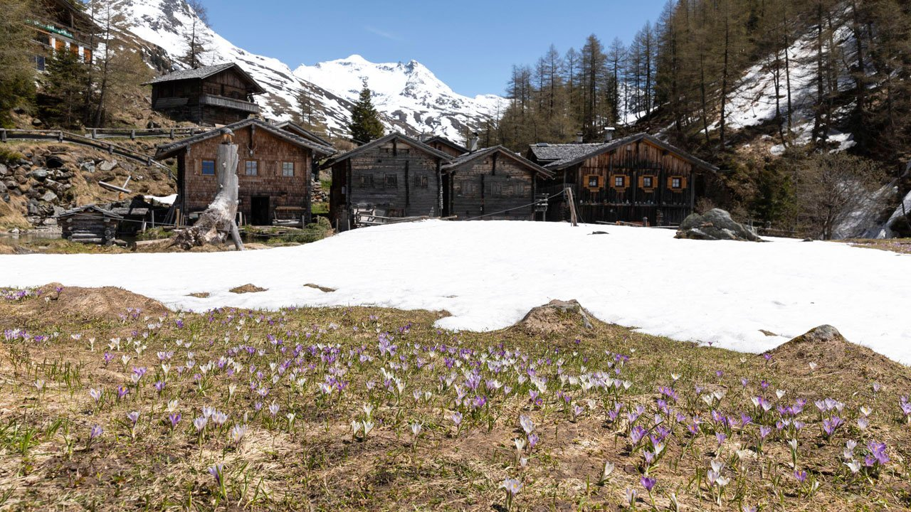 Spring walk into the Gschlößtal Valley, © Tirol Werbung/Mario Webhofer