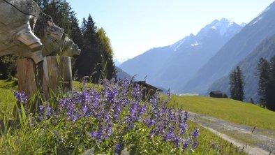 romantische Wanderwege in Holzgau