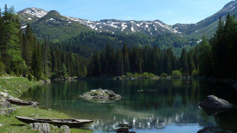 Nature Watch to Lake Obernberger See, © Tirol Werbung/Bernhard Aichner