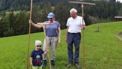 https://images.seekda.net/AT_UAB7-07-12-04/Heuernte_geschafft.jpg