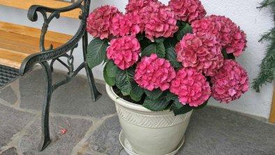 Blumen Deko - vor dem Haus