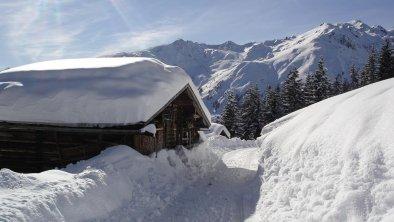 Winter, © Schneesicher